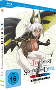 The Testament of Sister New Devil Vol. 4