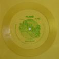 (C) SLAM Media / BARONESS Flexi Vinyl / Zum Vergrößern auf das Bild klicken