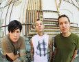 BLINK-182 (c) Universal Music / Zum Vergrößern auf das Bild klicken