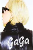 (C) Goldmann Verlag / Lady Gaga x Terry Richardson / Zum Vergrößern auf das Bild klicken