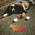 SPIRAL STAIRS, THE The Real Feel (c) Domino/Rough Trade / Zum Vergrößern auf das Bild klicken